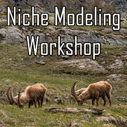 Niche Model Workshop