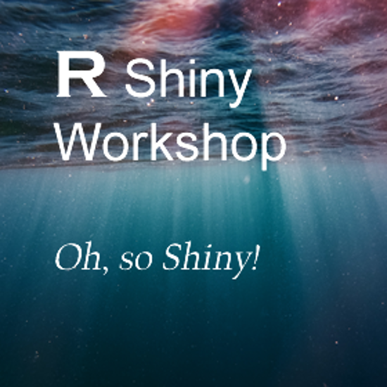 R Shiny Workshop